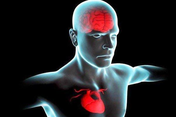 سلامت ذهن و روان با قلب و عروق سالم مرتبط است